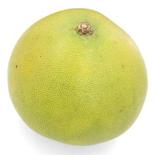 Pasar Pomelo - Large