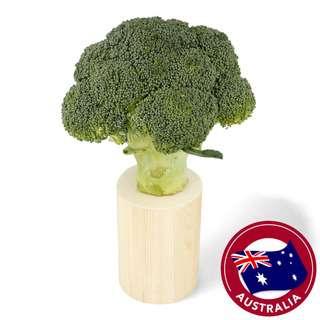 Organic Australia Broccoli