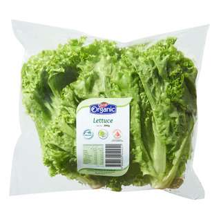 Pasar Organic Lettuce