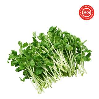 P&L Fresh Vegetable - Pea Sprouts