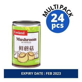 Canland Can Vegetable - Mushroom (Whole)