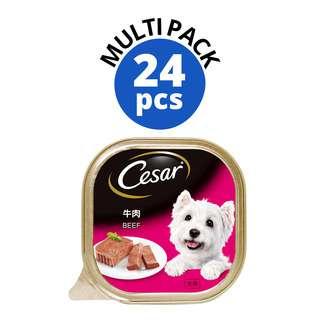 Cesar Dog Wet Food - Beef