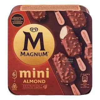 Magnum Mini Ice Cream - Almond