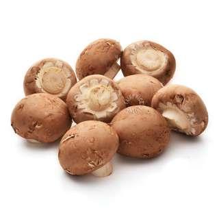 Pasar Swiss Brown Mushroom