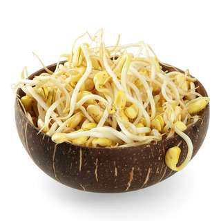 Pasar Singapore Soya Bean Sprouts
