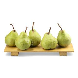 Argentina Packham Pear