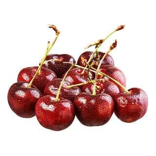 Fresh Red Cherry
