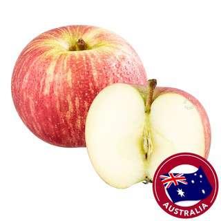 Beary Organic Australia Fuji Apple