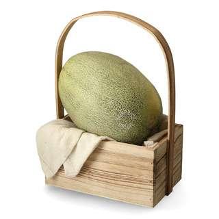 Fresh China Melon - M