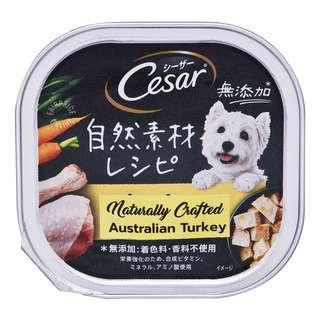 Cesar Dog Wet Food - Australian Turkey