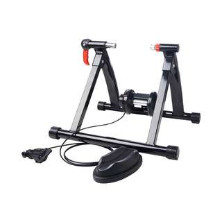Steve & Leif Bicycle Trainer