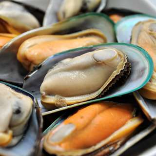 Catch Seafood New Zealand Mussels (Frozen)