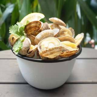 Catch Seafood White Clams (Frozen)