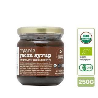 Nature's Superfoods Organic Yacon Root Syrup