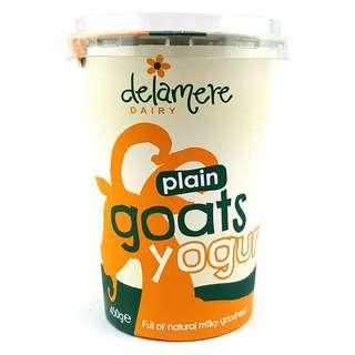 Delamere Dairy Plain Goats Yoghurt