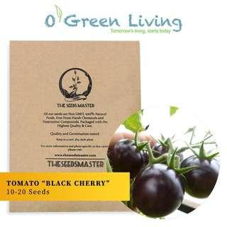 "Organic Green Living (OGL) S113 Tomato ""Black Cherry"""