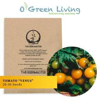 "Organic Green Living (OGL) S109 Tomato ""Venus"""