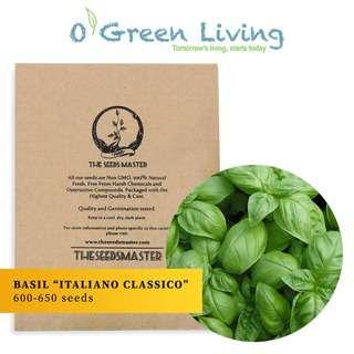Organic Green Living (OGL) S3 Basil Italiano Classico