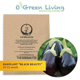 """Organic Green Living (OGL) S31 Eggplant """"Black Beauty"""""""