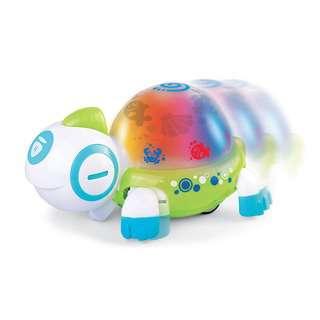 Hap-P-Kid Little Learner Walk N' Glow Turtle