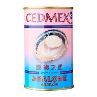 Cedmex Mexico Wild Abalone 1.5H