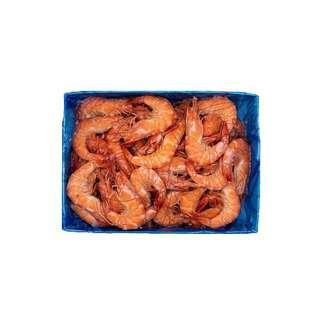 Food Explorer Frozen Cooked Vannamei Prawn
