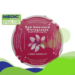 Edible Garden City RGB Grow Kits - Red Amaranth Microgreens