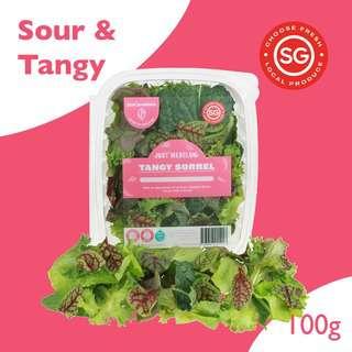 Just Produce Just Mesclun: Tangy Sorrel