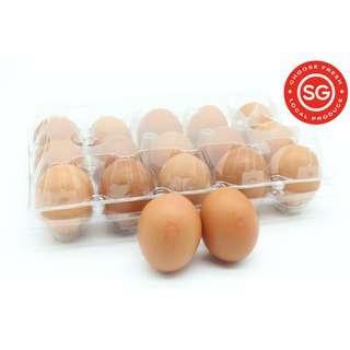 LCK Farm Local Eggs Vitamin E (Family Pack) 50g