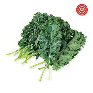 Vegeponics Kale