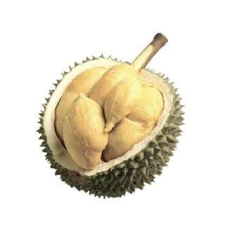 Durian Superman XO Durian