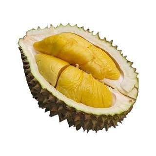 Durian Superman Black Gold Mao Shan Wang