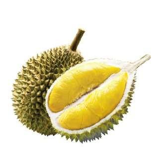 Durian Superman Mao Shan Wang