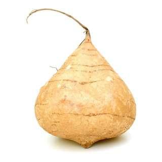 GROZER Malaysia Fresh Turnip