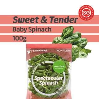 Sustenir Spectacular Spinach