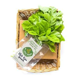 My Local Greens White Asian Spinach