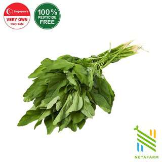 Netafarm Pesticide-Free Sharp Bayam Spinach