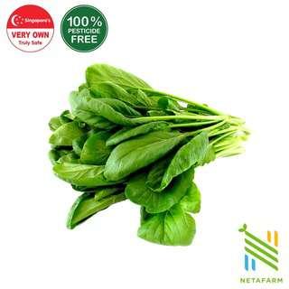 Netafarm Pesticide-Free Local Chye Sim