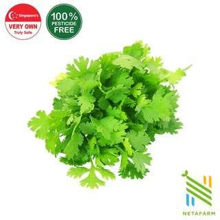 Netafarm Pesticide-Free Fresh Chinese Coriander