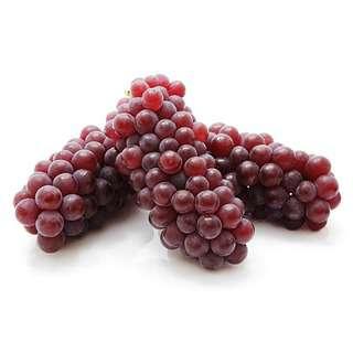 Korea Premium Delaware Grapes