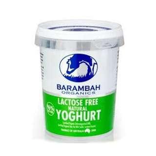 Barambah Organics Natural Lactose Free Yoghurt