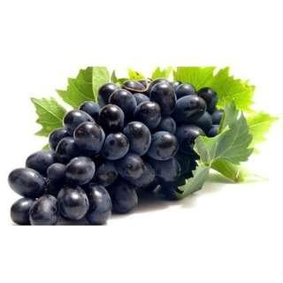 Global Seasons Black Seedless Grape 500GM