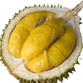 Mr Bazaar Durians MSW Mao Shan Wang Dehusked Vacuum Sealed