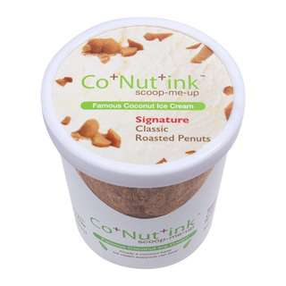 Co+Nut+Ink Coconut Ice Cream with Roasted Peanuts