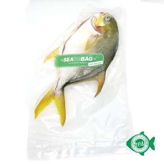 SEATOBAG LACTOSEAFOOD Golden Pomfret Whole 300-399g