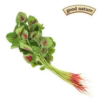 Good Nature Organic Red Bayam