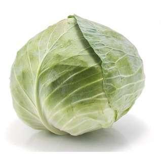 Grozer Beijing Cabbage