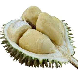 Mr Bazaar XO Sultan D24 Durians Fresh Durians Delivery