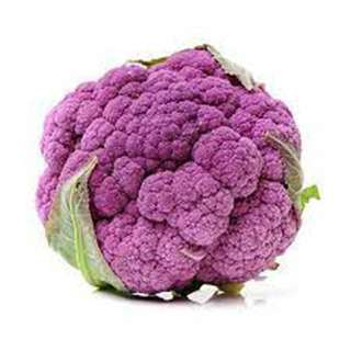 MMMM Purple Cauliflower Head, Australia
