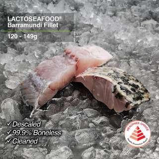 LACTOSEAFOOD Barramundi(Seabass) Fillet 120-149g